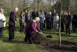 symbolic tree planting initiated by Ness' mother Jutta